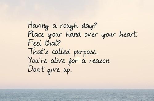 encourage268