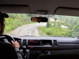 OCM-Guatemala-STM-Driving-Curvy-Road